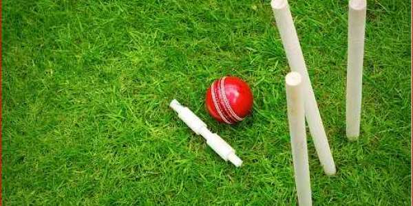 How to play cricket?